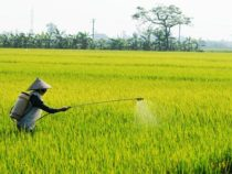 Significant Changes in Tax Policies for the Fertilizer Industry