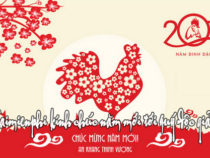 Happy Lunar New Year 2017-Year of the Fire Rooster